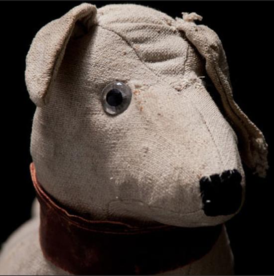 Obsolete-dog-1