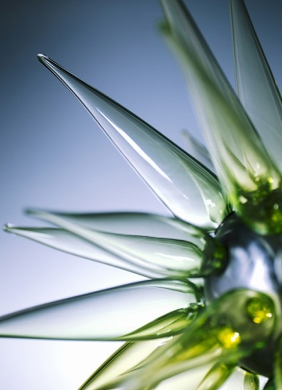 Star-cactus-lighting-2