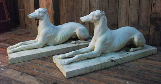 Drew-Greyhounds